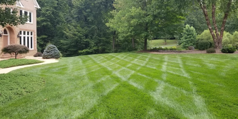 Image of Lawn Care